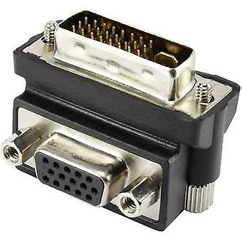 Renkforce DVI / VGA-Adapter [1 x DVI-Stecker 29-Pin - 1 X VGA-Steckdose] schwarz