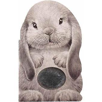Fourrure lapin par Annie Auerbach - livre 9781438050119