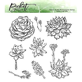 Picket Fence Studios Succulent Blossoms Clear Stamps