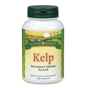 Sunny Green Kelp 100 mg, 120 tabs