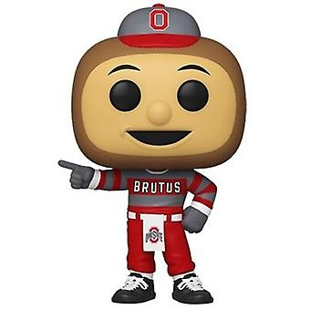 Ohio State University - Brutus Buckeye USA import