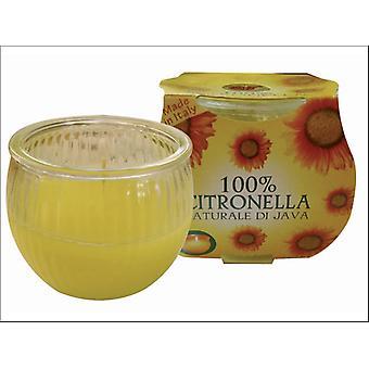 Prices Citronella Jar In Cluster Pack SUN002418