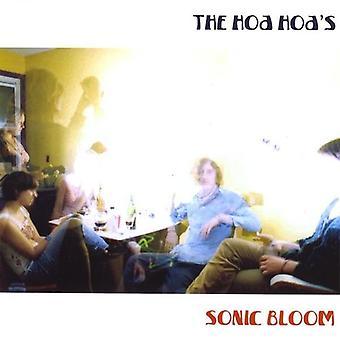 Hoa Hoa - importação EUA Sonic Bloom [CD]