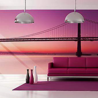 Fototapet XXL - bukt - San Francisco