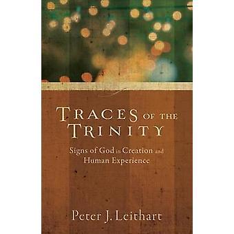 Spuren der Dreifaltigkeit - Zeichen Gottes in der Schöpfung und der menschlichen Erfahrung