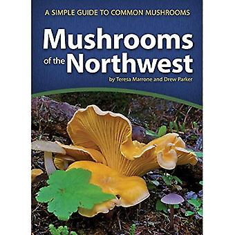 Mushrooms of the Northwest:� A Simple Guide to Common Mushrooms (Mushroom Guides)