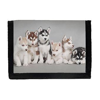 Portefeuille sibérien de chiots de Husky