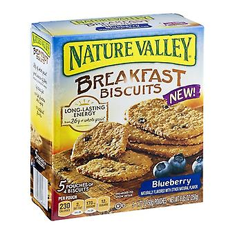 Nature Valley Biscuits Blueberry