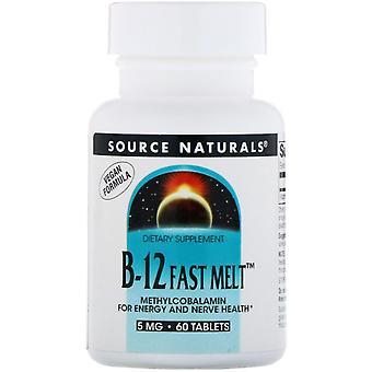 Source Naturals, B-12 Fast Melt, 5 mg, 60 comprimés