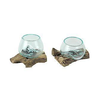 Set of 2 Blown Molten Glass On Teak Driftwood Decorative Bowls Vases Terrariums Planters