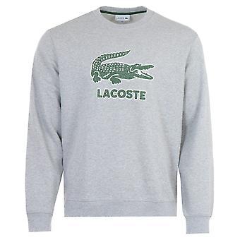 ラコステ ビッグ クロコダイル ロゴ クルー ネック スウェットシャツ - グレー