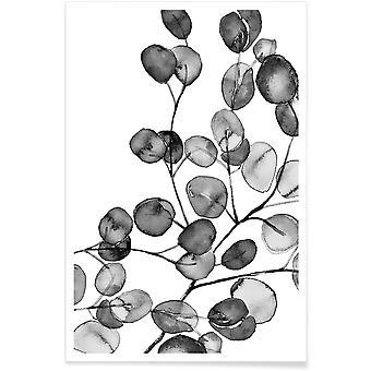 JUNIQE Print - Eucalyptus Watercolor Black & White - Leaves & Plants Poster in Grey & White