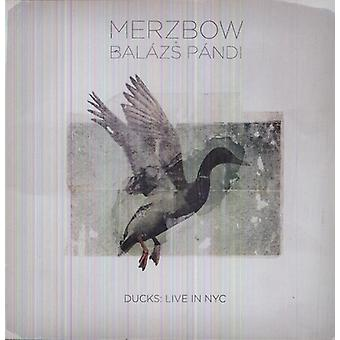 Merzbow & Balazs Pandi - Ducks: Live in Nyc [Vinyl] USA import