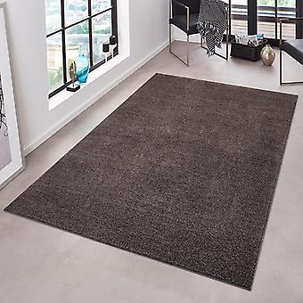 Fruncido antracita Unicode puro Terciopelo alfombra