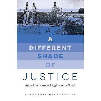 Une nuance différente de la Justice: droits civils américains d'origine asiatique dans le Sud (Justice, pouvoir et la politique)