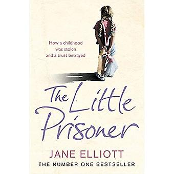 The Little Prisoner: How a Childhood Was Stolen and a Trust Betrayed