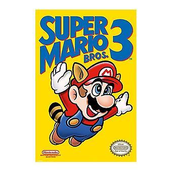 Super Mario Bros. 3, Maxi Poster-NES Cover