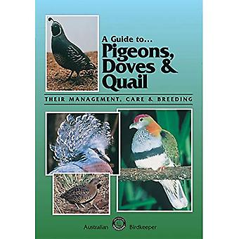 A Guide to Pigeons, Doves and Quail: Their Management, Care and Breeding