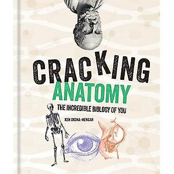 Cracking Anatomy by Ken Okona-Mensah - 9781788401517 Book