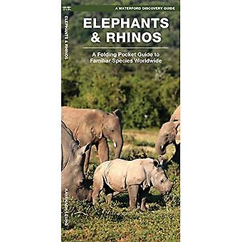 Waterford's Discovery Guide: Elephants and Rhinos: A Folding Pocket Guide to the Status of Familiar Species (Waterford's...