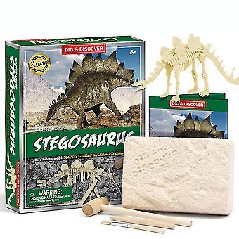 Stegosaurus Fossilien Wissenschaft Kits Bildung Archäologie Biologie Geburtstagsgeschenk