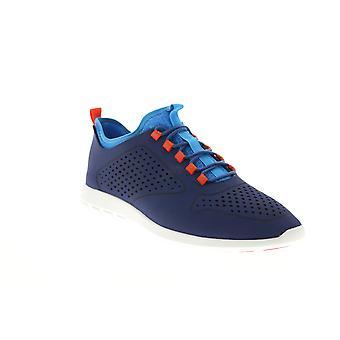Clarks Erwachsene Herren Jambi Run Sport Ox Lifestyle Sneakers
