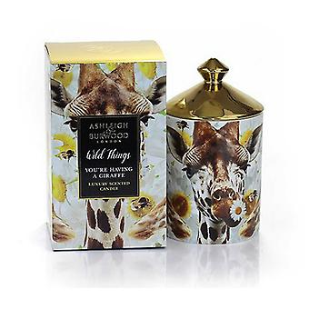 Ashleigh & Burwood Wild Things Luksus Duftende Gift Boxed Candle You're Have en giraf - Orange Blossom