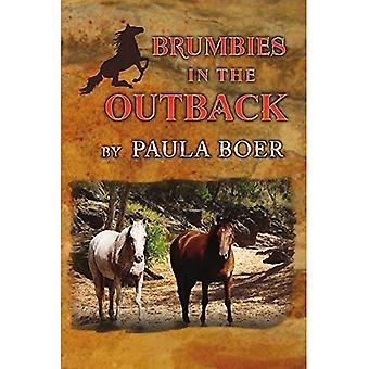 Brumbies in the Outback (Brumbies)