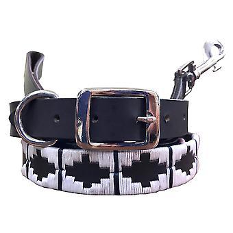 Carlos diaz genuine leather  polo dog collar and lead set  cdkupb275