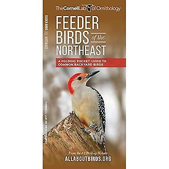 Feeder Birds of the Northeast: A Folding Pocket� Guide to Common Backyard Birds