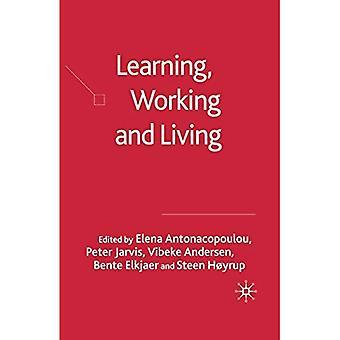 Leren, werken en leven: het terrein van het leren van het werkleven in kaart brengen: 2005