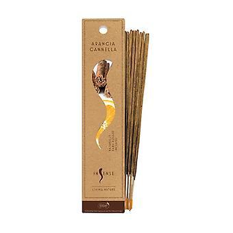 Orange and Cinnamon Incense 10 units