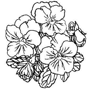 Pansies (pequeño) sello montado en madera