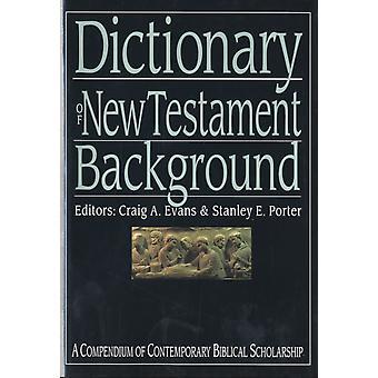 Un diccionario del Nuevo Testamento por Craig Evans &Stanley Porter