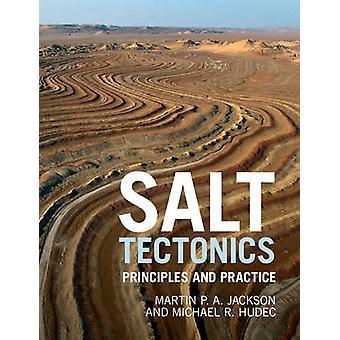 Salt Tectonics von Martin P A Jackson