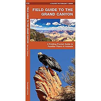 Field Guide to the Grand Canyon: A Folding Pocket Guide to Familiar Plants and Animals (A Pocket Naturalist Guide)