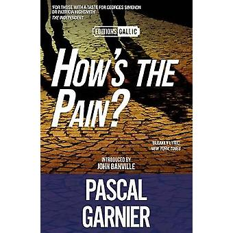How's the Pain? [Editions Gallic] by Pascal Garnier - 9781910477922 B