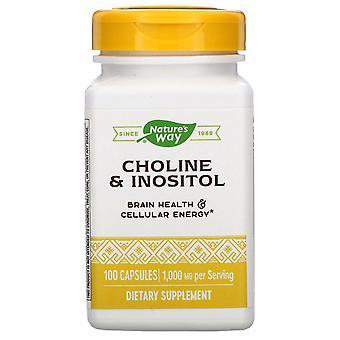 Nature's Way, Choline & Inositol, 1,000 mg, 100 Capsules