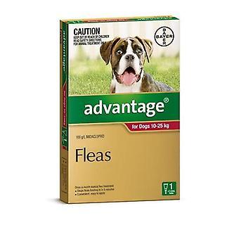 Het voordeel van rood 1 Pack grote honden 10-25kg