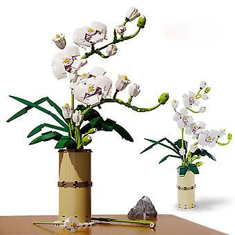 Orchid blomster bukett byggeklosser byen romantisk hjem dekorasjon DIY venner murstein gave