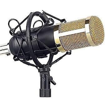 Microphone Kit Computer Condenser Mic with Arm Sound Card Pop Filter Windbreak