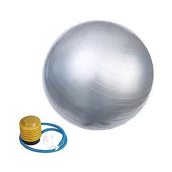 85 * 85Cm رمادي 85cm 1000g المهنية المضادة للانفجار استقرار الكرة اليوغا سماكة موازنة devcie ممارسة أداة dt3286