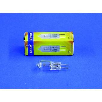 Omnilux Studiolampe Halogen 24 V GY6.35 100 W White