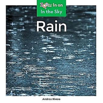 Rain by Andrea Rivera - 9781680799330 Book