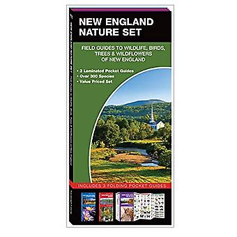 New England Nature Set: Field Guides to Wildlife, Birds, Trees & Wild Flowers of New England (Nature Set)