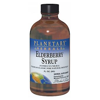 Planetary Herbals Elderberry Syrup, 8 fl oz