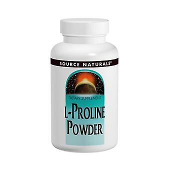 Quelle Naturals L-Proline, Pulver 4 Oz