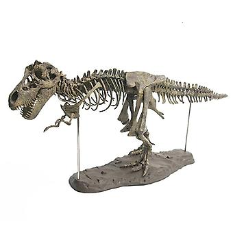 3d Dinosaur Toy Model Skeleton Educational Biology Biologia Interesting