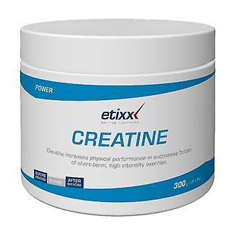 Etixx Creatine Creapure 300 g
