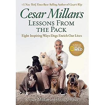 Cesar Millans Lehren aus der Packung